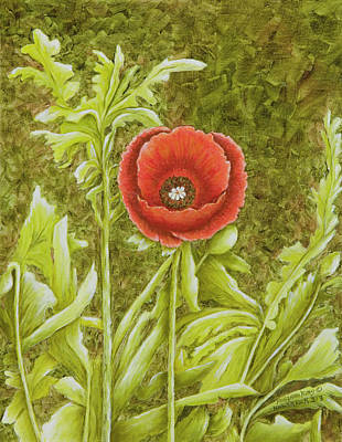 Painting - Red Poppy by Mary Ann King