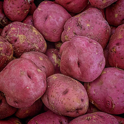 Photograph - Red Potatoes by Lewis Mann