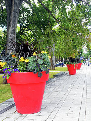 Photograph - Red Pots 1 by Ron Kandt