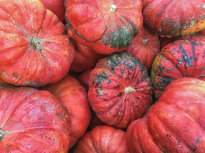 Photograph - Red Pumkins by Jonathan Nguyen