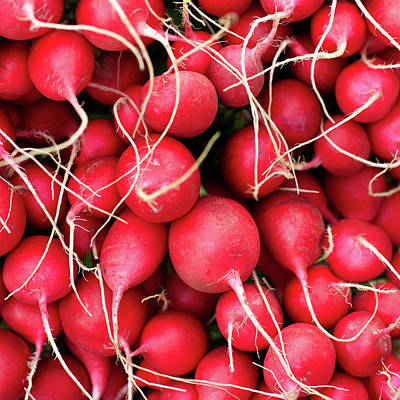 Photograph - Red Radishes by Todd Klassy