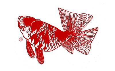 Red Ranchu Print by Shih Chang Yang