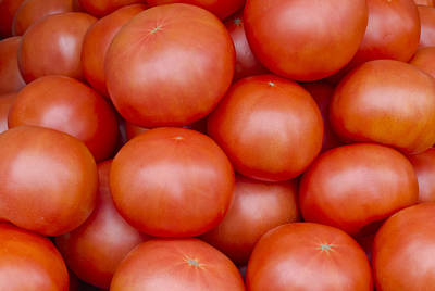 Red Ripe Tomatoes Art Print by John Trax