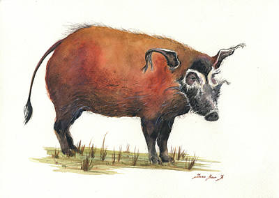 Pig Painting - Red River Hog by Juan Bosco