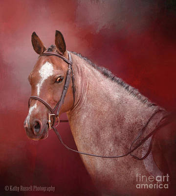 Red Roan Art Print by Kathy Russell