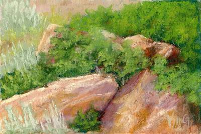 Salt Air Painting - Red Rock And Scrub Oak by David King