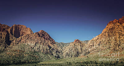 Photograph - Red Rock Canyon #18 by Blake Webster