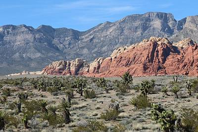 Photograph - Red Rock Canyon - 2 by Christy Pooschke
