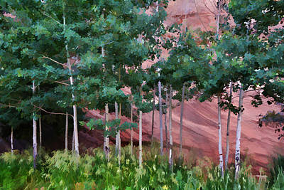 Photograph - Red Rock Canyon 3 by Diane Alexander