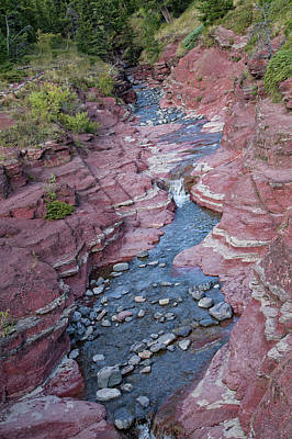 Photograph - Red Rock Canyon by Ronald Lutz