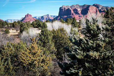 Photograph - Red Rock Country by Susie Weaver