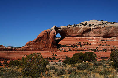 Photograph - Red Rock Desert by Mark Smith