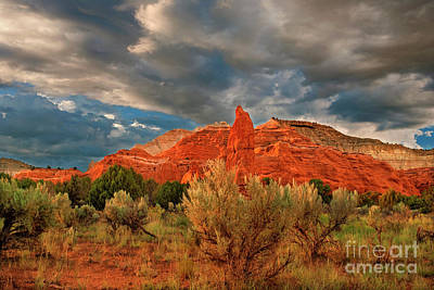 Photograph - Red Rock Formations Kodachrome Basin State Park Utah by Dave Welling