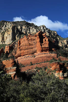 Photograph - Red Rock Loop Sedona 5 by Mary Bedy