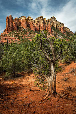Photograph - Red Rock Mountains by Rick Strobaugh