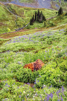 Art Print featuring the photograph Red Rock Of Rainier by Pierre Leclerc Photography