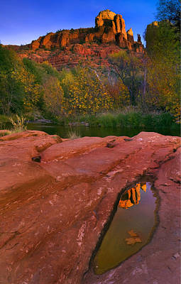 Red Rock Reflection Art Print by Mike  Dawson