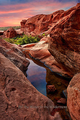 Photograph - Red Rock Reflections - Be The Water by Renee Sullivan
