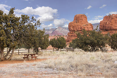 Photograph - Red Rock Rest by Ricky Dean