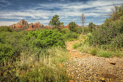 Photograph - Red Rock Views by David Cote