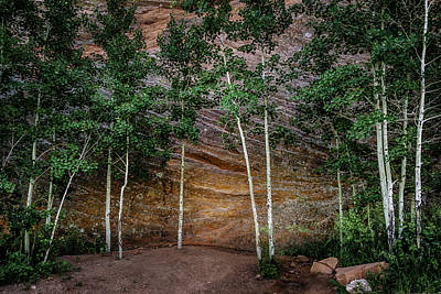Photograph - Red Rock Wall by Mary Angelini