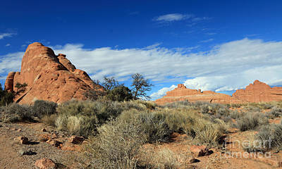 Photograph - Red Rocks And Thunderheads by Mary Haber