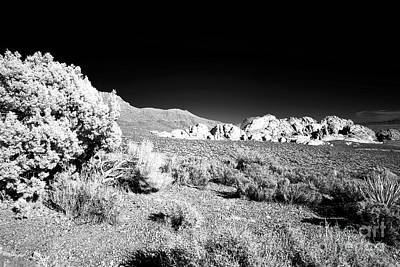 Photograph - Red Rocks In The Canyon Infrared by John Rizzuto