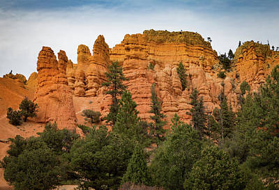 Photograph - Red Rocks Of Utah by Kathleen Scanlan