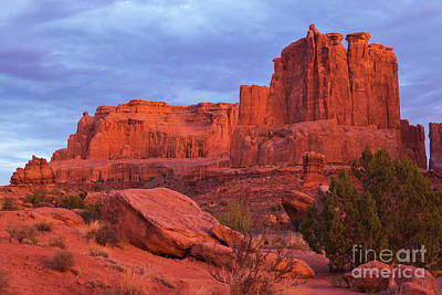 Photograph - Red Rocks by Sharon Seaward