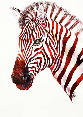 Red Rodney Zebra Art Print