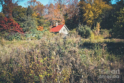 Photograph - Red Roof Cottage - Sunnyside  by Colleen Kammerer