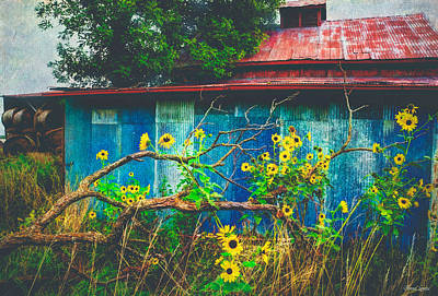 Photograph - Red Roof Tin Barn And Wild Sunflowers by Anna Louise