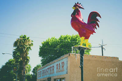 Rooster Photograph - Red Rooster Bar Overton Nevada by Edward Fielding