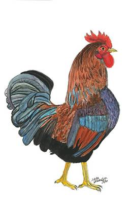 Painting - Red Rooster by Sara Stevenson