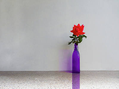 Photograph - Red Rose Blue Bottle by Mark Blauhoefer