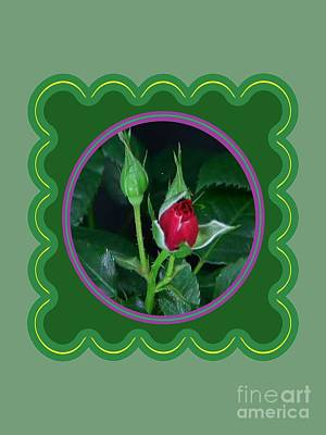 Photograph - Red Rose Bud Flower Floral Posters Photography And Graphic Fusion Art Navinjoshi Fineartamerica Pixe by Navin Joshi
