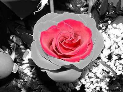 Photograph - Red Rose by DeeLon Merritt