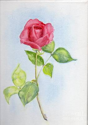 Red Rose Art Print by Doris Blessington