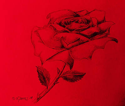 Painting - Red Rose by Edgar Torres