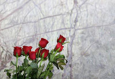 Photograph - Red Rose Flowers by Prakash Ghai