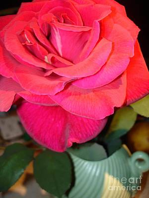 Photograph - Red Rose In Blue Fluted Ceramic by Celeste