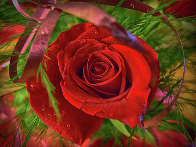 Photograph - Red Rose Is For Love by Tatiana Travelways