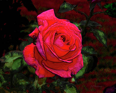 Red Rose Art Print by Joe Halinar