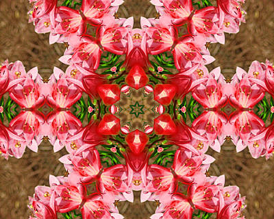 Art Print featuring the photograph Red Rose Kaleidoscope by Bill Barber