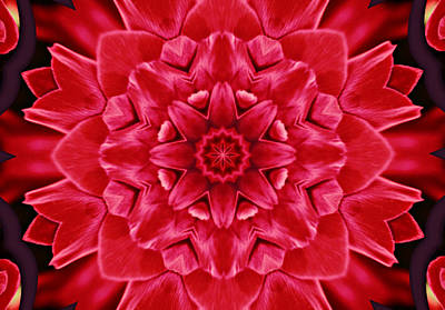 Red Rose Kaleidoscope Art Print by Cathie Tyler