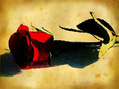 Photograph - Red Rose by Kyle West