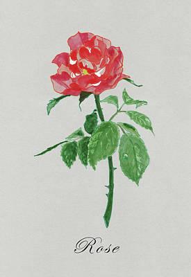 Painting - Red Rose by Masha Batkova