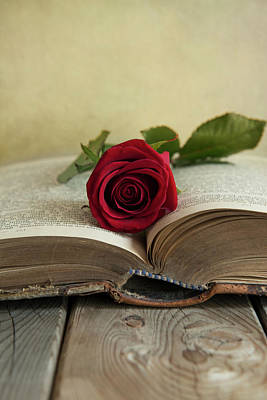 Old Plank Tables Photograph - Red Rose On An Old Big Book by Jaroslaw Blaminsky