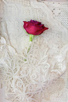 Photograph - Red Rose On Lace by Susan Gary