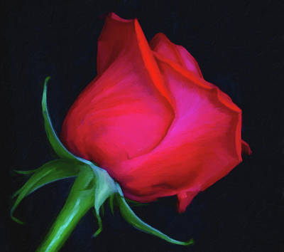 Photograph - Red Rose - Painting by Garvin Hunter